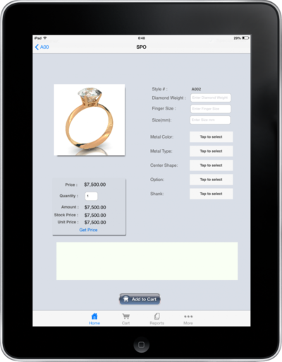 Jewelry Special Order on iPad